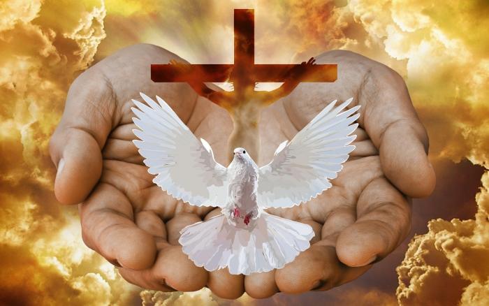 Nedeľné zamyslenie biskupa Mariána Chovanca: Boh nie je samotár