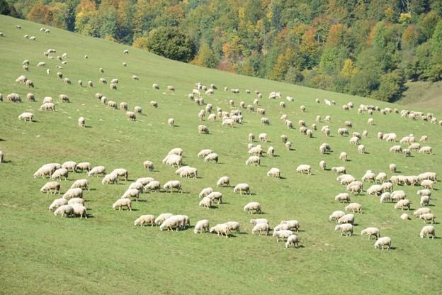 Príďte na Lumentúru a vyhrajte pobyt v Slovenskom raji!
