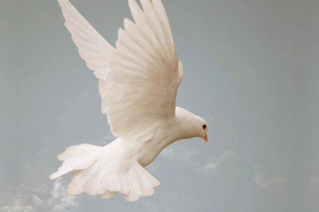 Kto je Duch Svätý?
