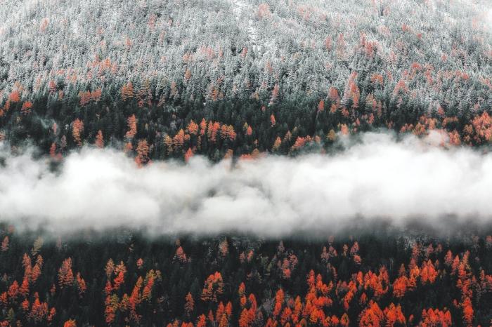 Od 1. septembra sa svetielkáči vyberú do prírody