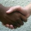 Biskupi USA proti rasizmu